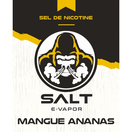 10 ml Salt E-Vapor - Mangue Ananas 20 mg/ml